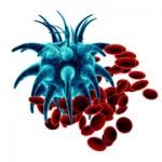 lechenie-raka-krovi-v-izraile-180